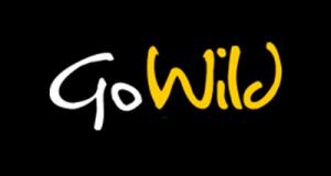 gowild-casino-3-541ac4fc70a0f81e188b4567